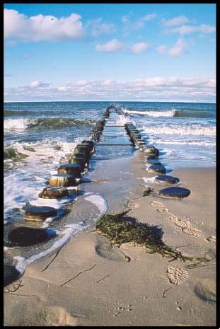 Baltic Beach by ariane