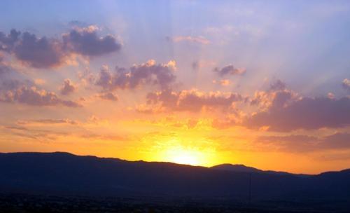 Sunburst by fez
