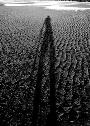 5 O\'clock Shadow by adamm