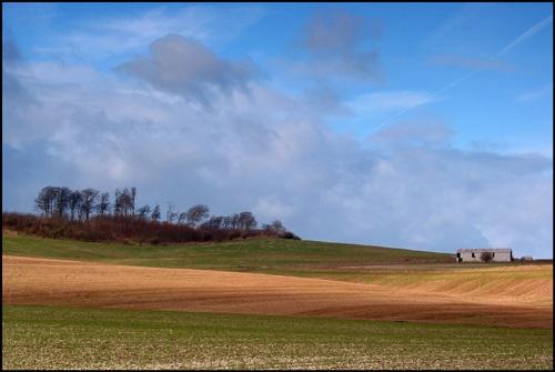 Beckhamton Barn by rogerbryan