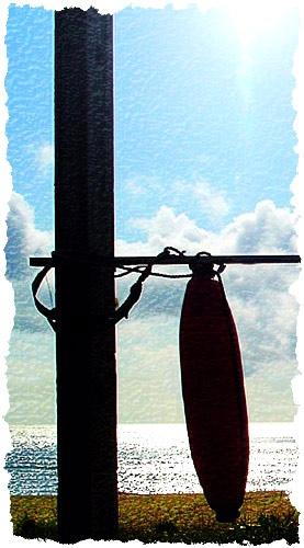 Lifesaver by Steel