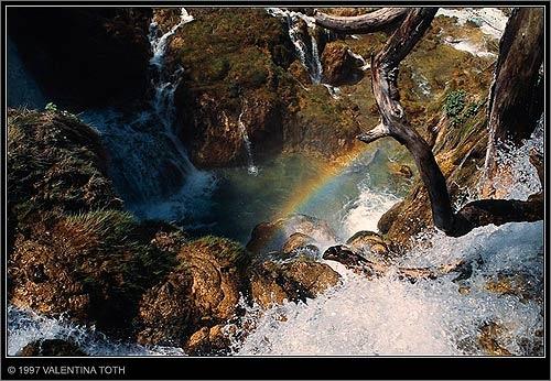 rainbow by vtoth