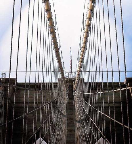"\""The Bridge of Life\"" by trackball77"