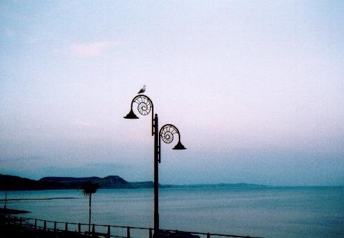 Lyme Light by conrad