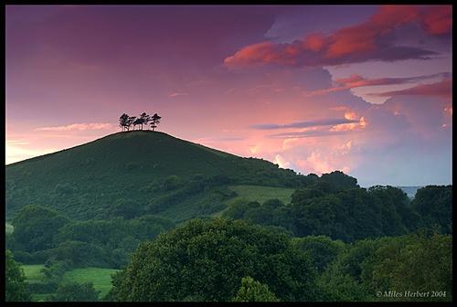 Dorset Hills by Miles Herbert