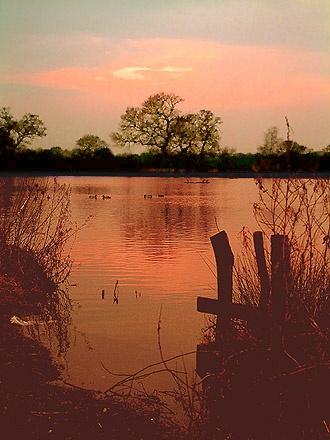 Evening Glow by davecalver