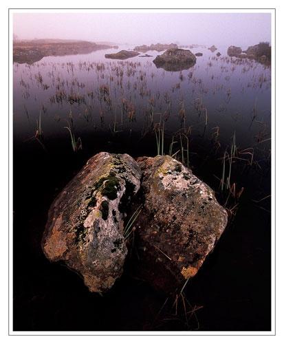 Rocks and Grasses by bravo charlie