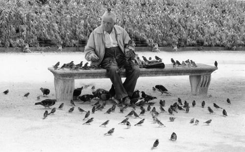 Birdman of Paris by imjam