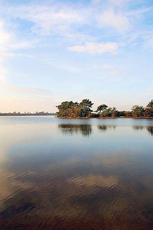 Hatchett Pond by chris.maddock