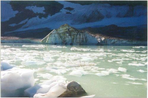 edith cavell glacier by 53  squirrel