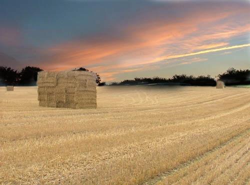 hay a cube by petegaylard