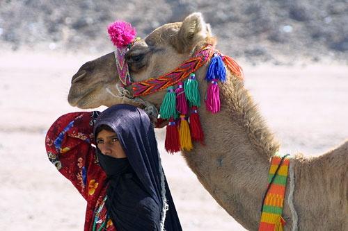 Desert beauties by trudi