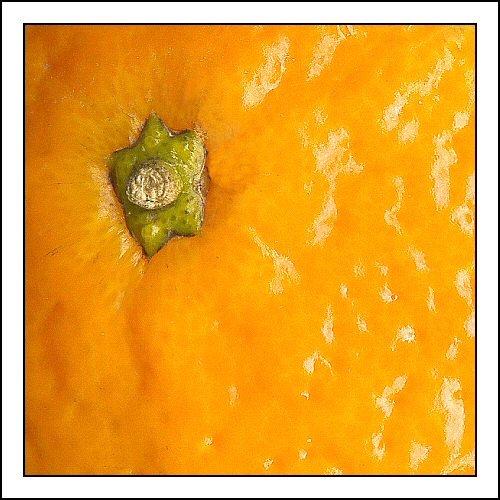 Orange by BrianM