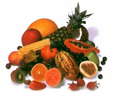 fruits by angeldani