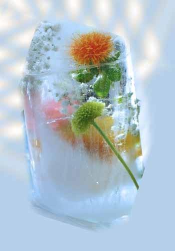 Cool Flowers by deavilin