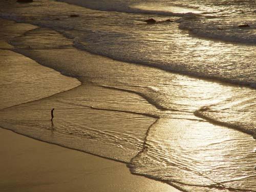 walk on water by nj