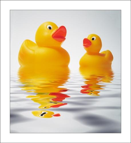 Ducks by ejtumman