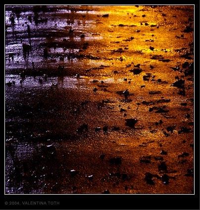 cracky pavement & leaves & lights & rain.... by vtoth