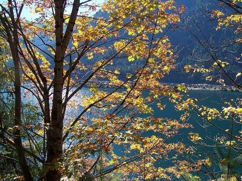 Fall at Lake Cushman by ckurle
