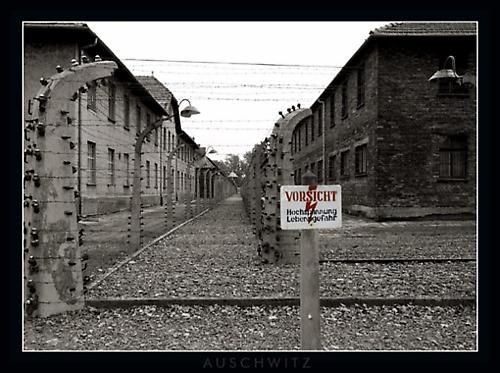 \'Auschwitz\' by geo