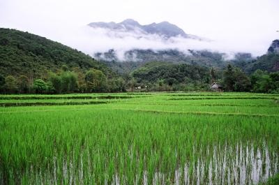 Remote Laos Valley by mr_s