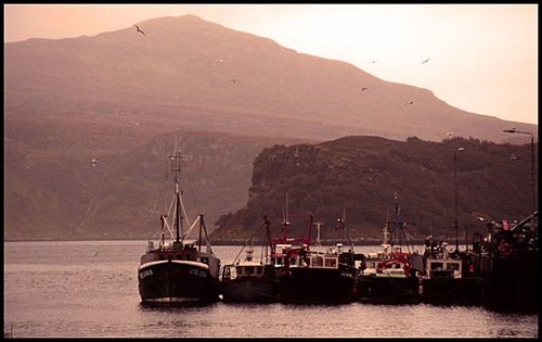 Portree Harbour by robs