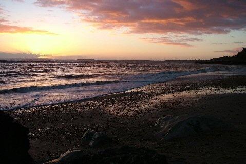 Pink beach by carriebugg