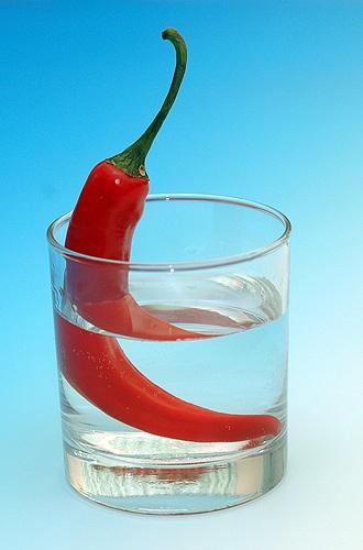 chili jus by shidee