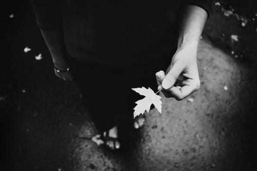 .leaf by hermar