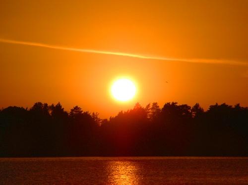orange sun by ojjo