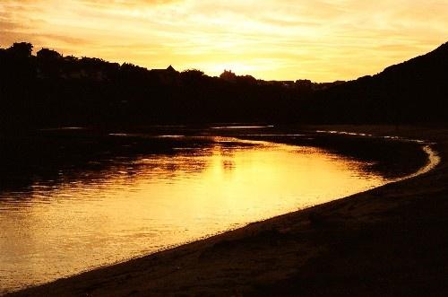 Golden Morning by casey