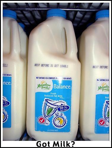 Got Milk? by heidilee