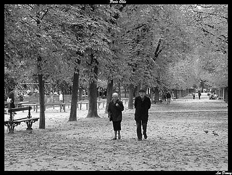 Paris Olds by leedewey