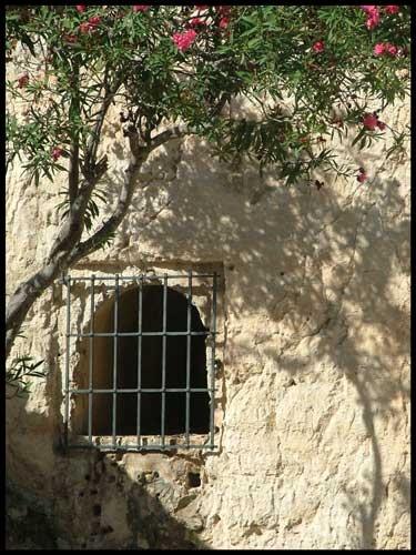 Window by br