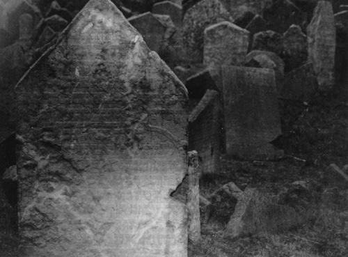Prague Cemetery by imjam