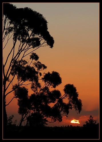 Views of Australia 2 by eafy