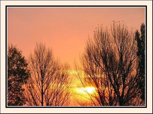 Orange Sunrise by permission to land