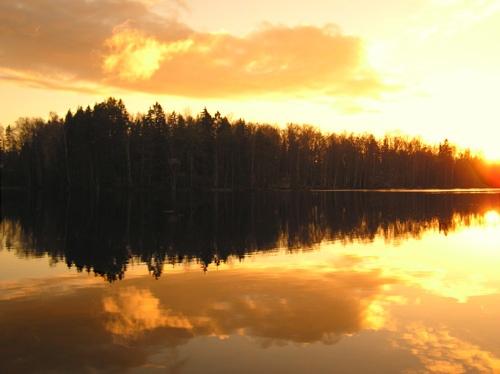 autumn by ojjo