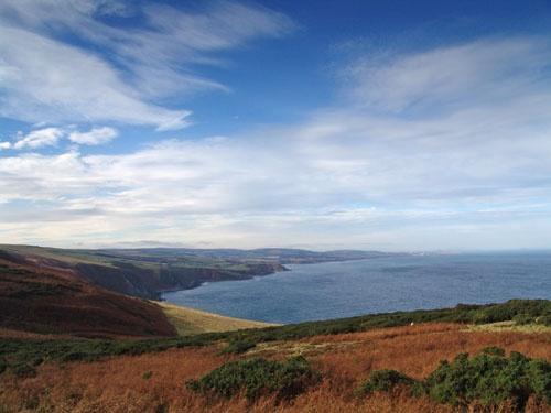 Berwickshire Coast by Taff