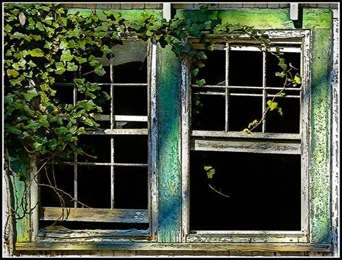 Windows by drlesser