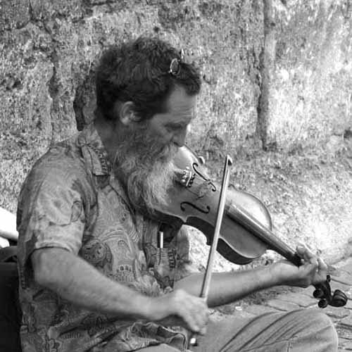 Fiddler on the Street? by Maverick