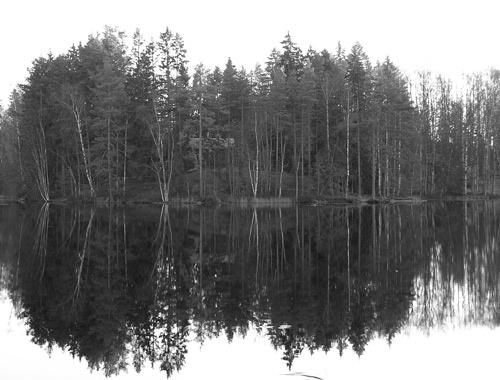 b&w reflections by ojjo