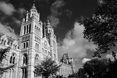 Natural History Museum 2 by jamess