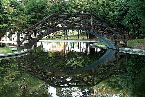Reflection by emazevedo