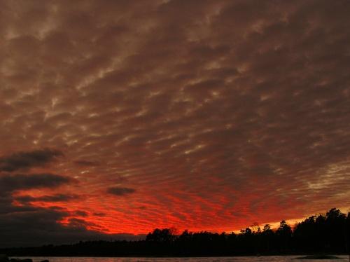 sunset colours by ojjo