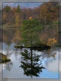 Autumn Colours #11