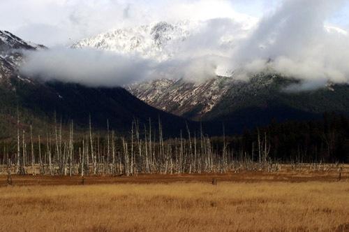 Kenali Peninsula, Alaska by street3