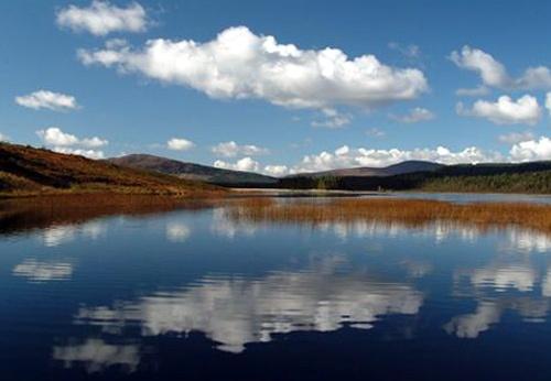 Reflection in Loch by phiggy