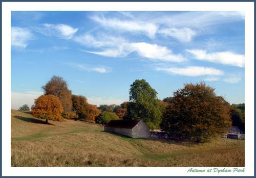 Dyrham Park Autumn by naturenut