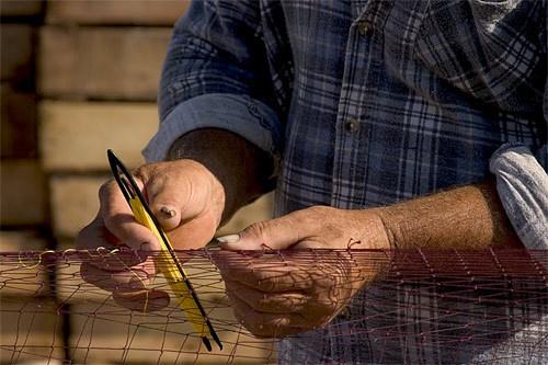 Fisherman\'s Hands by billma